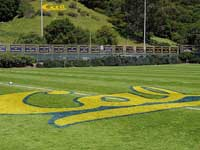 Nike Cal Varsity Rugby Camps