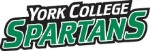 Nike Softball Camp York College of Pennsylvania