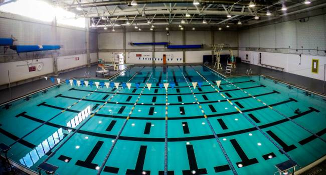 Gallery For Competitive Swimming Pool Side View