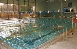 Limestone College Swim Camp