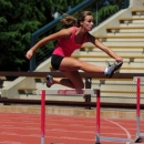Hurdle Work is Not Only for Hurdlers