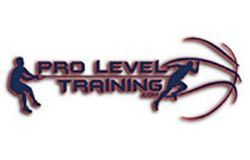 Pro Level Training Logo 250X160