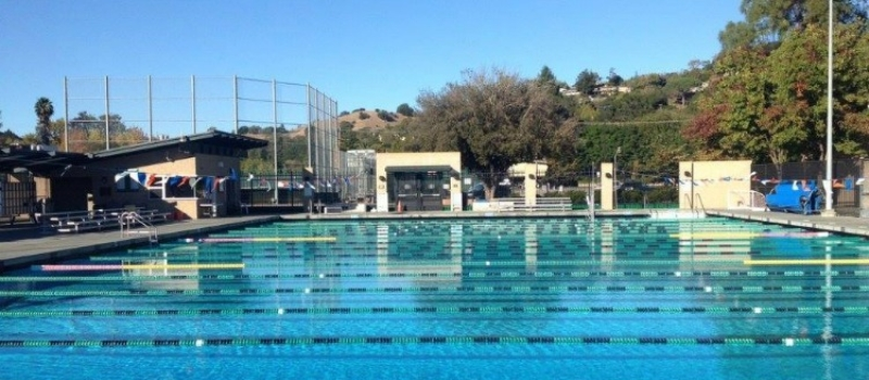 Peak Performance San Francisco Fall Swim Clinic Pool San Anselmo Ca